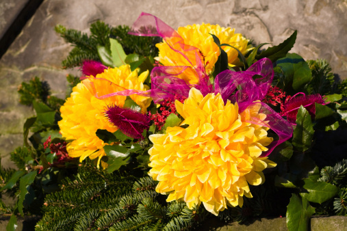 symp flowers